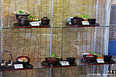 H21.九州熊本阿蘇  草千里売店食處*:IMG_9901.jpg