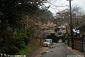 H22.山口 萩城跡,指月公園:IMG_5082.jpg