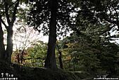 H22.岩手 平泉関山金色堂**:IMG_7886.jpg