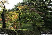 H22.岩手 平泉関山金色堂**:IMG_7894.jpg