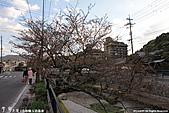 H22.島根松江 早咲きの桜が開花する早春の玉造溫泉を訪ね:IMG_7326.jpg
