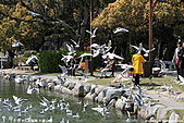 H22.九州福岡 大濠公園野鳥の森*:IMG_0809.jpg