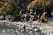 H22.九州福岡 大濠公園野鳥の森*:IMG_0815.jpg