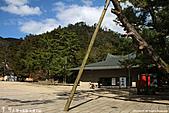 H22.島根「神々の国」出雲大社:IMG_6894.jpg