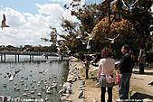 H22.九州福岡 大濠公園野鳥の森*:IMG_0833.jpg