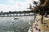 H22.九州福岡 大濠公園野鳥の森*:IMG_0842.jpg