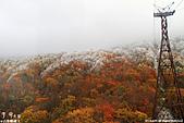 H22.山形 蔵王ロープウェイの山麓-樹冰高原 間**:IMG_9092.jpg