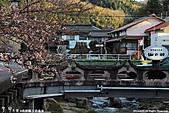 H22.島根松江 早咲きの桜が開花する早春の玉造溫泉を訪ね:IMG_7401.jpg