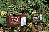 H22.青森 奥入瀬渓流 銚子大滝**:IMG_0768.jpg