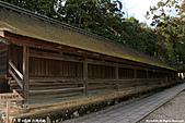 H22.島根「神々の国」出雲大社:IMG_6996.jpg