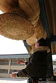 H22.島根「縁結びの神様」出雲大社神楽殿:IMG_6934.jpg