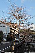 H22.島根松江  玉造溫泉街散策:IMG_7368.jpg