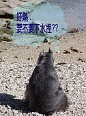 狗子搞笑事件簿:020003