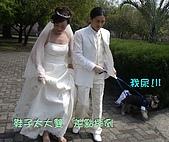 我的婚紗照-搞笑篇:940321659