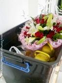 【求婚佈置】羅克阿舍:201109222373.jpg