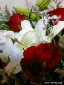 【求婚佈置】羅克阿舍:201109222388.jpg