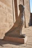 118.2010旅遊NO3~埃及紅海十二日遊記(六):dj016