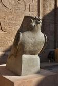 118.2010旅遊NO3~埃及紅海十二日遊記(六):dj017