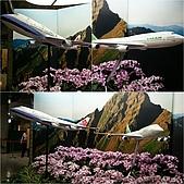 84.2009旅遊NO.2~新加坡四日自由行(一):cf005