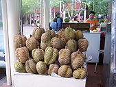 25.2006旅遊NO.4~泰國六日遊:Y020