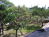 33.2007旅遊NO.3~台南美食兩日遊:ag018