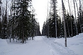 80.2009旅遊NO.1~阿拉斯加極光行(五):cb010