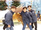 25.2006旅遊NO.4~泰國六日遊:Y015