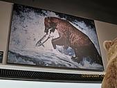 82.2009旅遊NO.1~阿拉斯加極光行(七):cd011