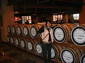2009燈會、金車酒廠:DSC03356.JPG