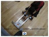 師範大學體能檢測20091020:IMG_0024.jpg