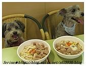 與狗共餐樂融融:正在傷腦筋該怎麼吃呀