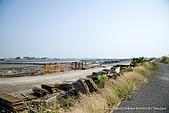 2010-04-13 林邊河堤:SW0413_b03.jpg