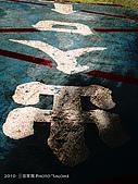 2010 *三信隨拍:SanSin_16.jpg
