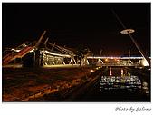2009-01-17 夜拍海洋之星:02.jpg