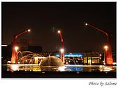 2009-01-17 夜拍海洋之星:09.jpg