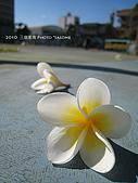 2010 *三信隨拍:SanSin_02.jpg