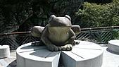 2010-07-31司馬庫斯:P1000001.JPG