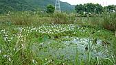 2010-09-17花蓮:P1020564.JPG
