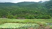 2010-09-17花蓮:P1020552.JPG