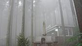 2009-11-21~22竹東山上人家民宿:P1010304.JPG
