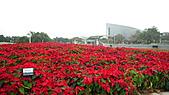 2010 FLORA EXPO PART 2:地景花海12.jpg