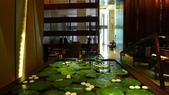 曼谷Sra Bua by Kiin Kiin泰式餐廳-(2014年亞洲最佳50餐廳第21名):曼谷Sra Bua by Kiin Kiin泰式餐廳5.JPG