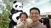 動物園+慶成街一號-私房泰:動物園-熊貓館3.jpg