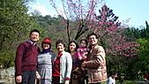 2011-大年初一 陽明山踏青&天成飯店晚宴:陽明公園家人合影4.jpg
