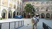 德國捷克奧地利之旅:7.西班牙馬術學校1.jpg