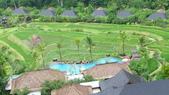 巴里島曼達帕麗思卡爾頓酒店(Mandapa-A Ritz-Carlton Reserve):巴里島曼達帕麗思卡爾頓酒店4.JPG