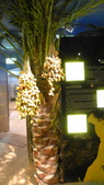阿拉伯聯合大公國之旅-杜拜博物館-水上計程車->香料黃金市場->棕櫚島亞特蘭提斯:杜拜-杜拜博物館20.jpg