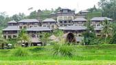 巴里島曼達帕麗思卡爾頓酒店(Mandapa-A Ritz-Carlton Reserve):巴里島曼達帕麗思卡爾頓酒店8.JPG