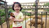 新竹關西六福莊生態度假旅館+六福村:新竹關西六福莊生態度假旅館17.JPG
