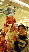 2010聖誕節:2010微風聖誕樹3.jpg